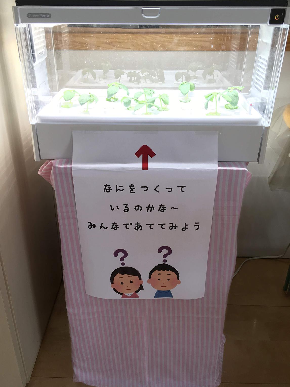 松井ヶ丘保育園の食育への取り組み画像2