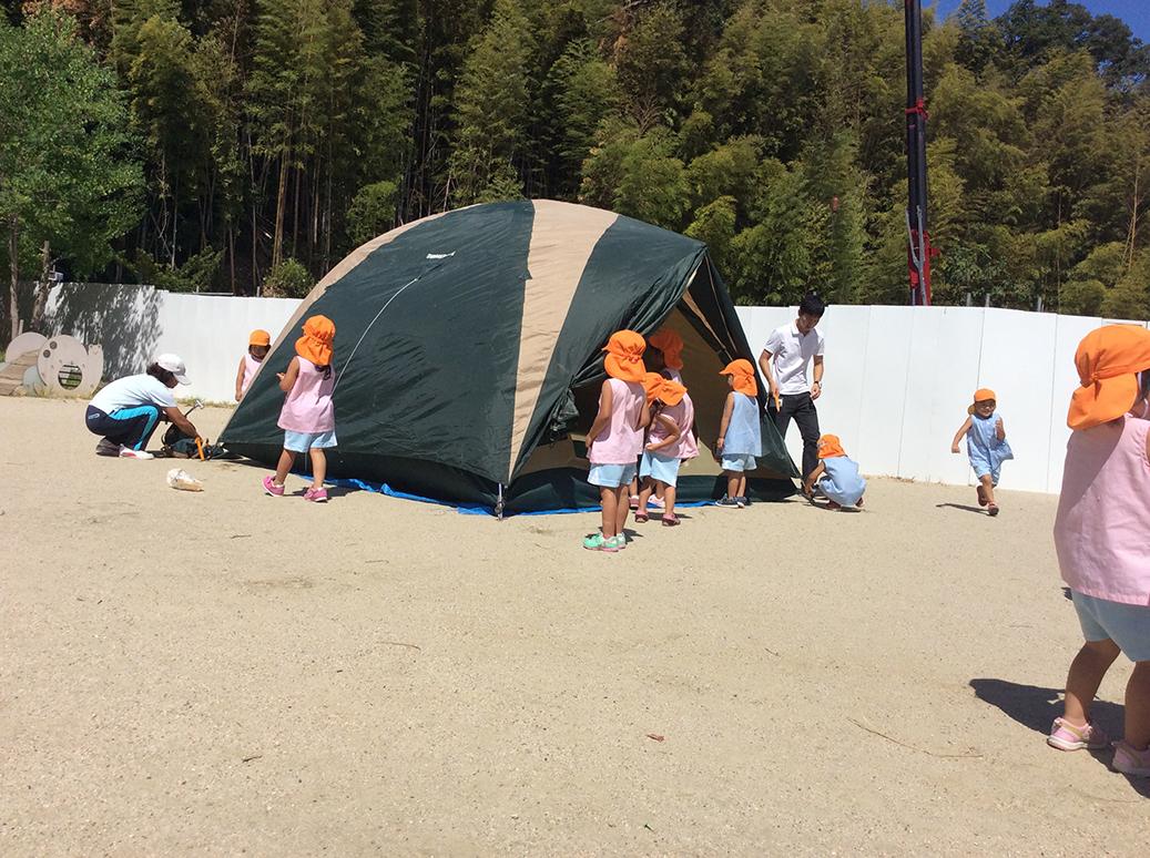キャンプごっこ画像2
